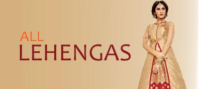Indian Lehenga choli gagra skirt indo western